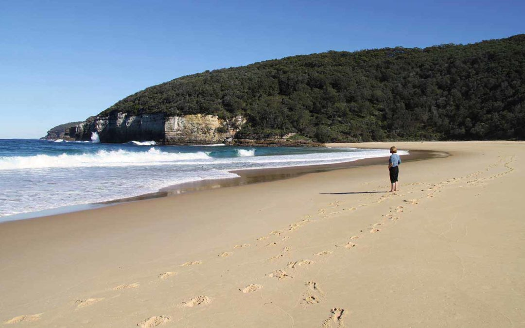 Great Hikes Around Jervis Bay